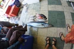 Úlovky maledivských rybářů