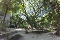 Sultan park, Maledivy