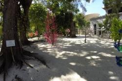 Stín v Sultan parku