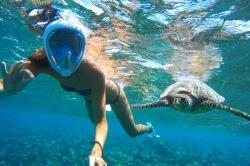 plavání se želvou