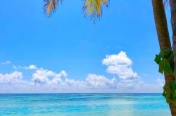 výhled z pláže