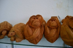 výrobky z kokosového ořechu