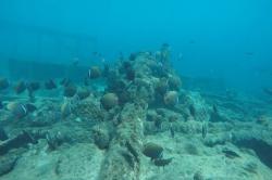 vrak lodě na Maledivách - Anchor point