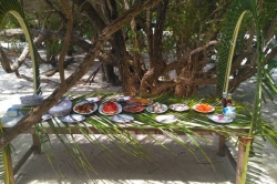 Maledivy, výlet na ostrov Vilingili, BBQ