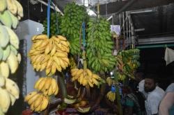Maledivy, Male, ovocný trh