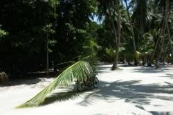 Maledivy, příprava na oslavu