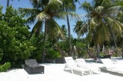 Maledivy bikini pláž s lehátky