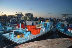 Rybářské čluny před rybím trhem