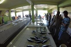 Maledivy rybí trh