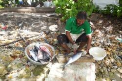 Příprava rybí večeře, Maledivy
