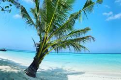 to jsou Maledivy
