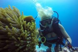 scuba diving Maledivy