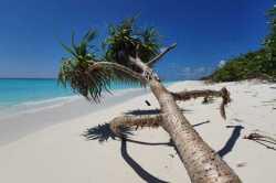 pláž-Fulhadhoo-2