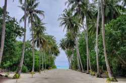 pláž-Fulhadhoo-5