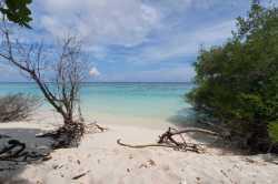 pláž-Fulhadhoo-8