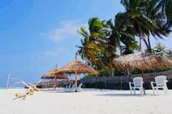 pláž, lehátka, písek a pamy
