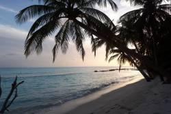 západ slunce, palmy a pláž