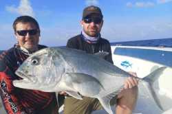 ryby Maledivy