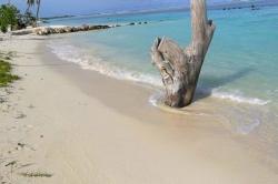 lokální pláž