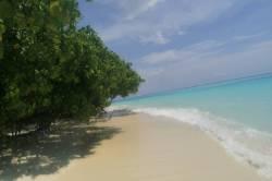 pláž na Thoddoo