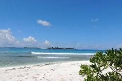 Pláž na výletě