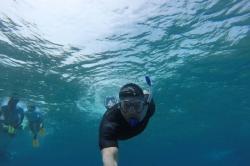 Pepovo podmořské selfie