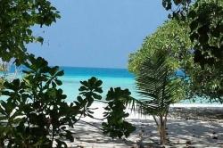 Dovolená na Maledivách - Jana a Oldřích