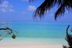 pláž a palmy na Maledivách