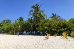 písek a palmy Omadhoo