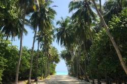 úžasná cesta až na pláž