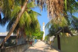 Cesta ve vesnici
