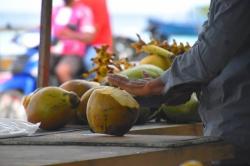 otevírání kokosu