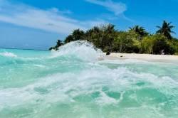 vlka-na-Maldivach