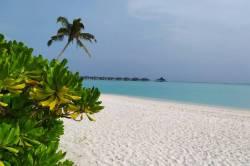 na pláži Maledivy