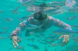 Plavání s rybami