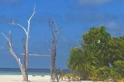 houpačka na pláži