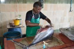 zpracování ryb na trhu v Male