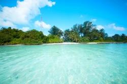 pláž, palmy a moře