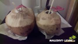 Kokos na uvídanou