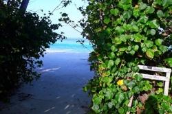 vstup na pláž Maledivy
