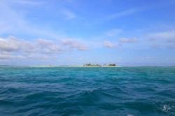 výletní picnic ostrov