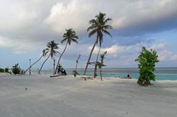 palmy na pláži Malediv