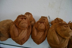 opice vyrobené z kokosu