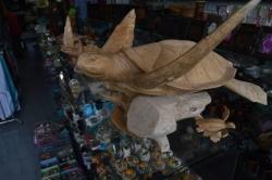 želva ze dřeva