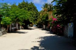ulice na ostrově