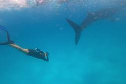 Kája se žralokem obrovským