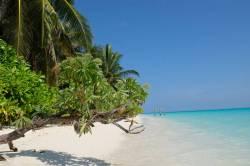 Dokonalá pláž na ostrově Thoddoo