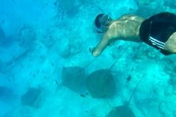 Plavání s mantami na Maledivách