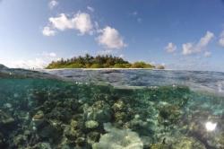 ostrov na Maledivách