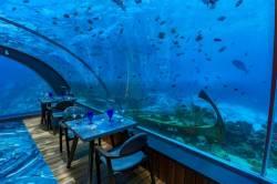 posezení v podvodní restauraci